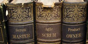 Agile Scrum Health Check